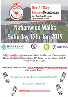 Operation Transformation Nationwide Walk